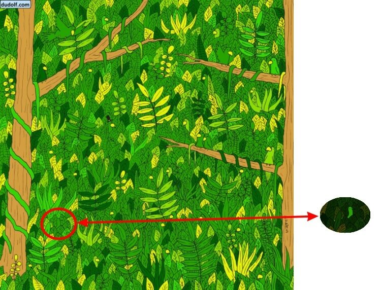 Find Snake In Picture Puzzle Answer