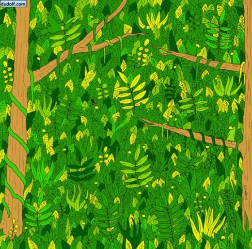 Find Snake In Picture Puzzle