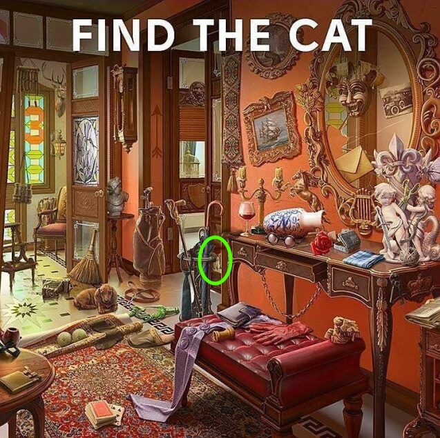 Find The Cat In Room Puzzle Picture Answer