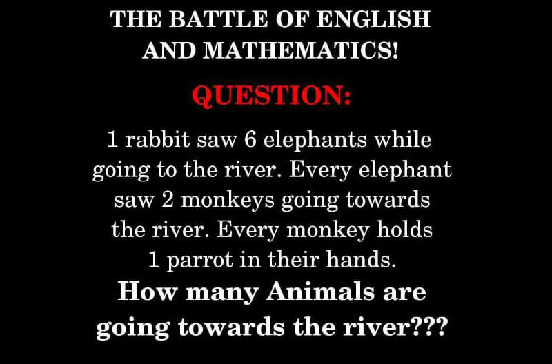 The Battle Of English and Mathematics ANSWER (SOLVED): 1 Rabbit Saw 6 Elephants Riddle Puzzle