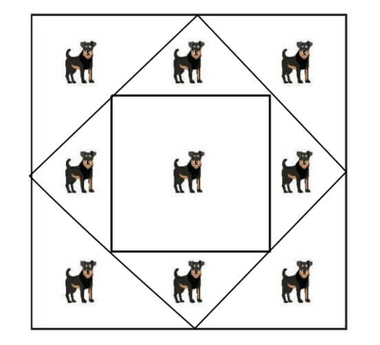There Are 9 Dogs Within A Square Fence Puzzle answer